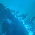 Godzilla: A szörnyek királya - előzetes és poszterek