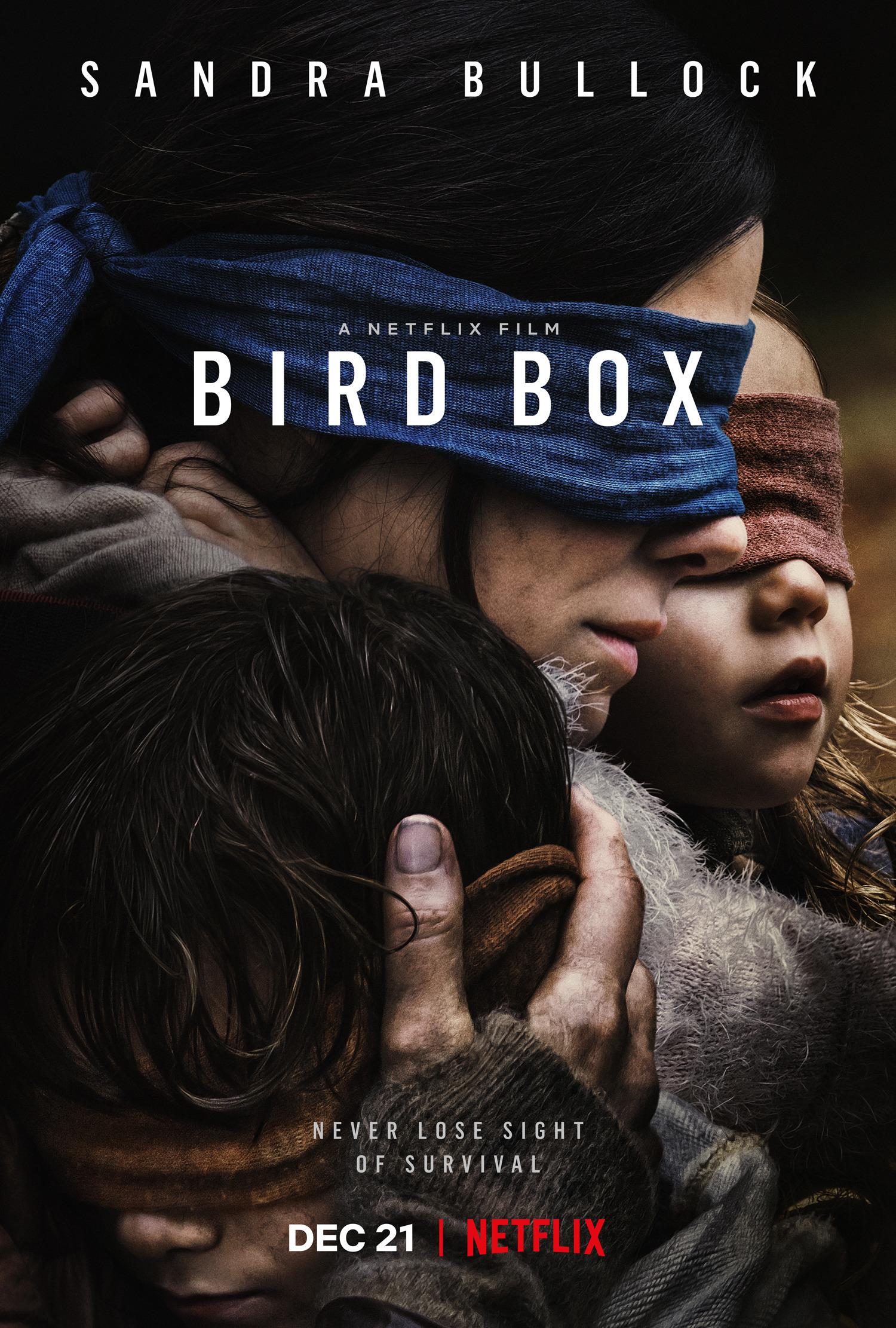 szmk_bird_box_netflix_madarak_a_doboz_2.jpg