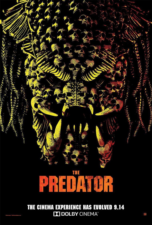 szmk_predator_ragadozo_shane_black_4.jpg