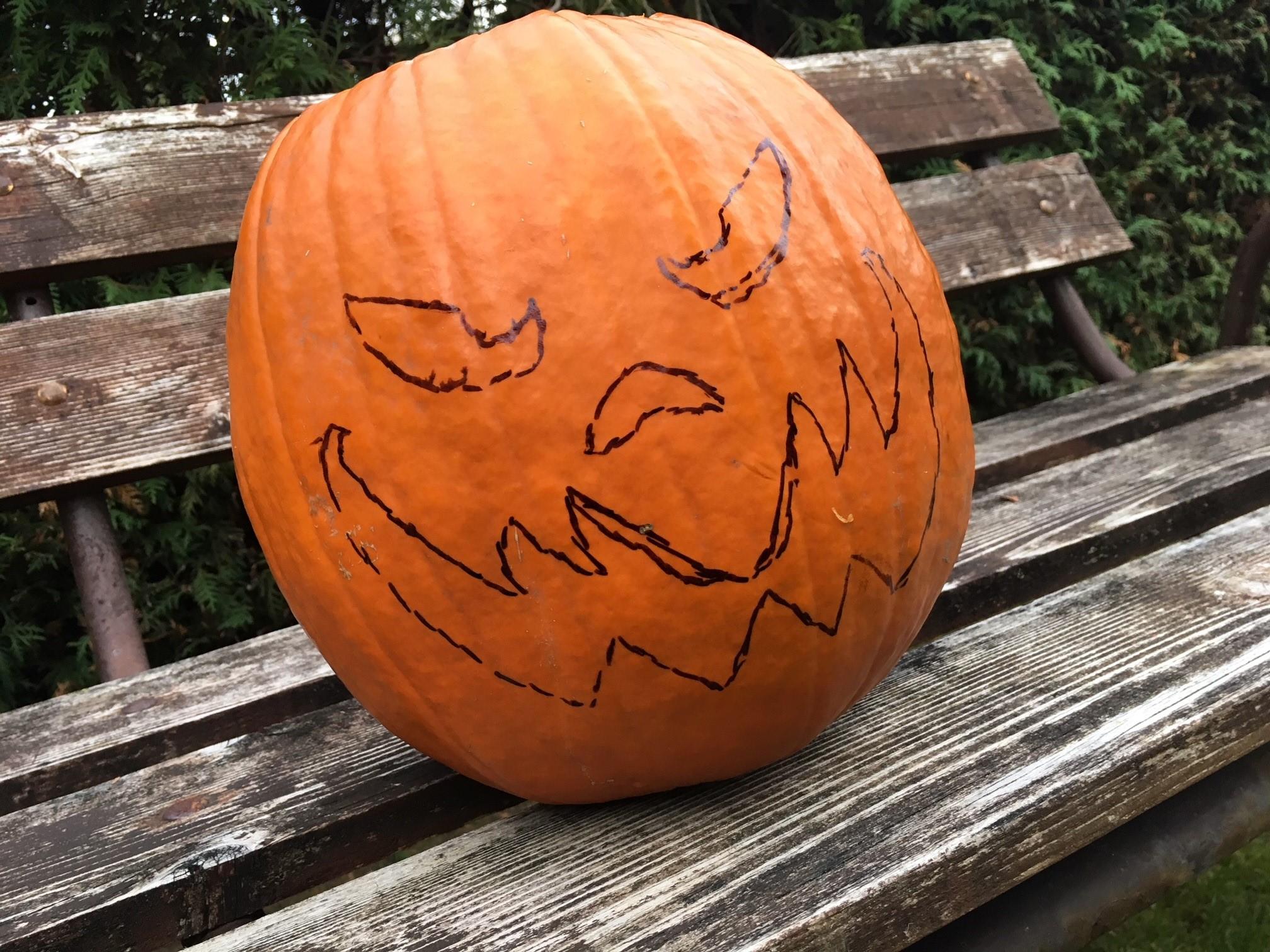 szmk_tok_pumpkin_boba_fett_star_wars_5.JPG