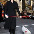 Zeta-Jones-ék új kutyája