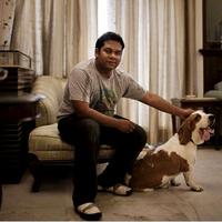 Társkereső kutyák Indiában