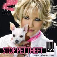 Pamela Anderson a kutyatolvajok ellen