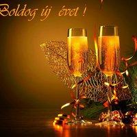 Boldog Új Évet Kívánunk minden Búvóhely keresőnek!