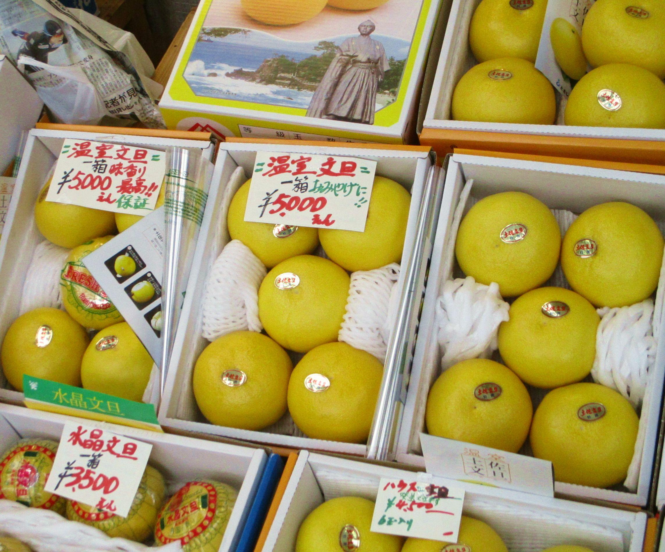 Buntan, Kócsi híres citrusféléje édes limonádé ízű