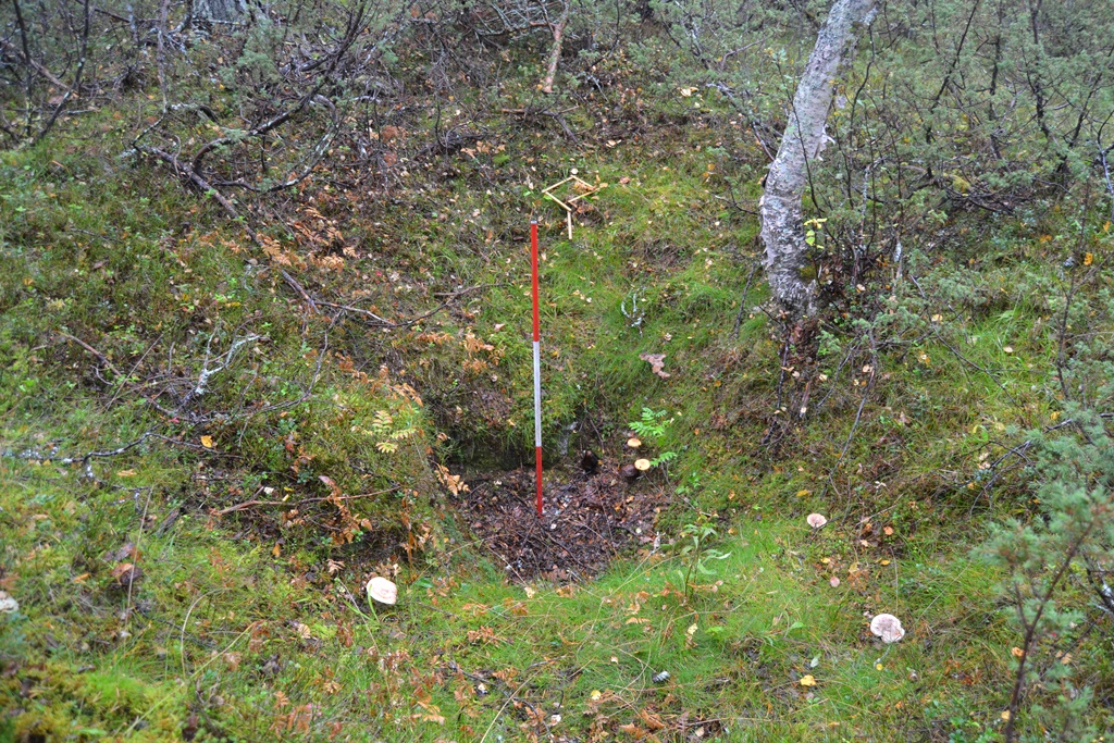 6. kép: Egy középkori feltehetően jávorszarvas csapda a mocsár közepén