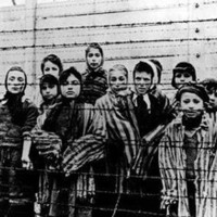 Holokauszt-kárpótlási csalók járják az országot