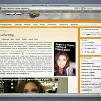 Vatera Vera avagy a Vatera integrált kommunikációs kampánya