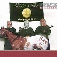 A hónap ledurvább képes szóvicce állattal és arabokkal