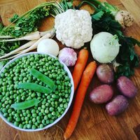 Nyári zöldségleves készül