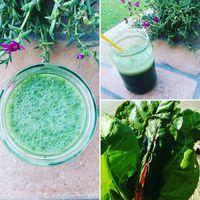 Breakfast smoothie from #banana #swisschard, #moringa powder and #spirulina...