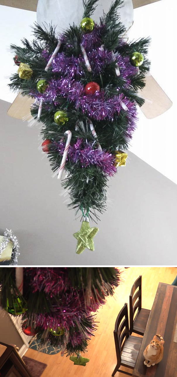 protecting-christmas-tree-from-dogs-cats-pets-3-585a68313a42e_605.jpg