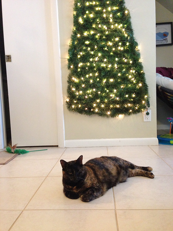 protecting-christmas-tree-from-dogs-cats-pets-6-585a66c36e602_605.jpg