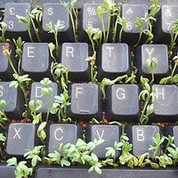 A sokoldalú klaviatúra