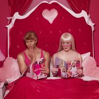 Babaházban - Jelenetek Barbie és Ken házasságából