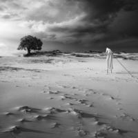 Szürreális barangolás kollektív tudatalattink sivatagában
