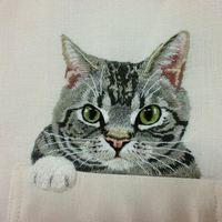 Hímzett macskát minden zsebbe!