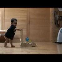 Szupercukiság: macska tanítja járni a kisbabát