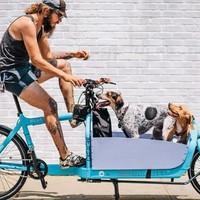 New Yorkban ilyen a bringás módi