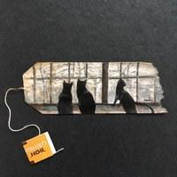 Képes napló és úti beszámoló használt teafiltereken