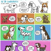 Japánul hogy ugatnak a kutyák?