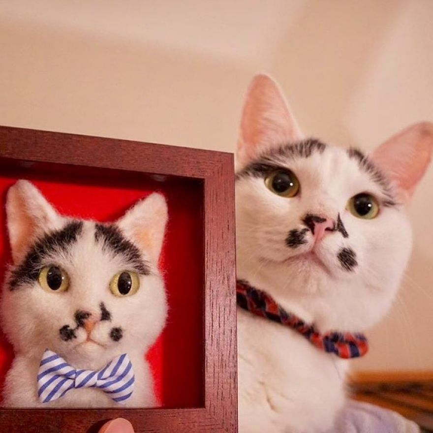 5b582481704c9-artist-makes-hyper-realistic-cats-using-felted-wool-and-the-result-is-wonderful-5b51cb5ed02f6_880.jpg