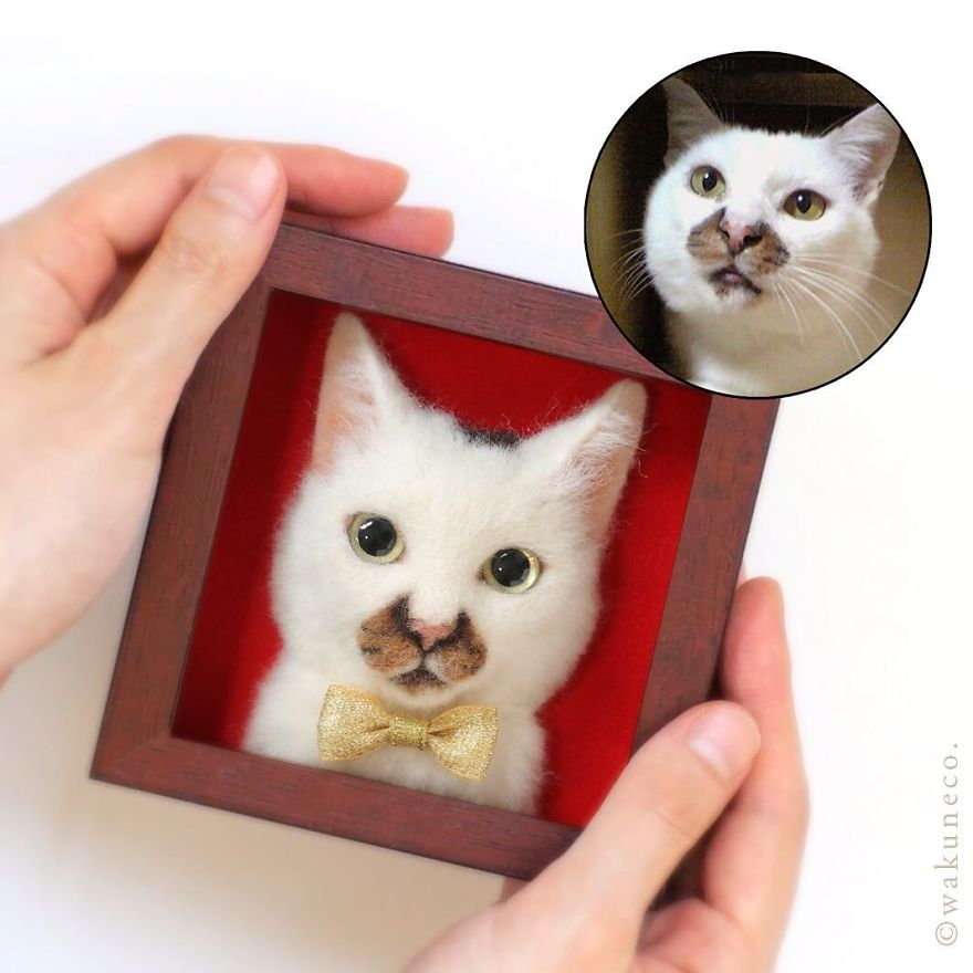 5b5824851771f-artist-makes-hyper-realistic-cats-using-felted-wool-and-the-result-is-wonderful-5b51cb60ecd54_880.jpg