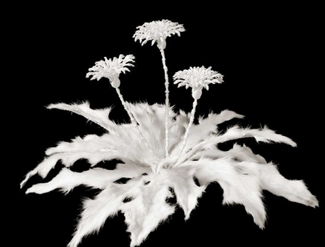 Bone-Flowers-Honebana.jpg
