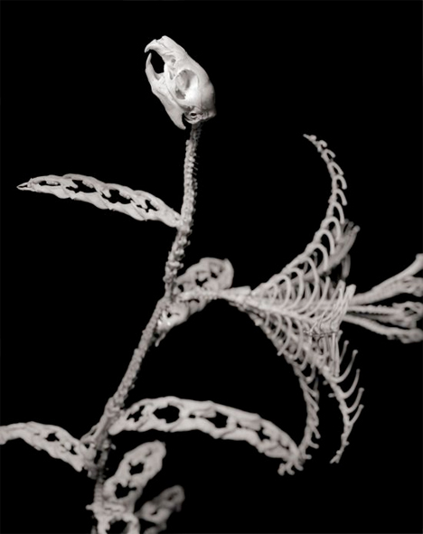 Bone-Flowers-Skeleton-Sculptures-5.jpg