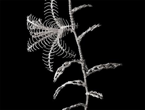 Bone-Flowers-Skeleton-Sculptures-6.jpg