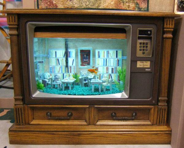 FishTV_aquarium.jpg
