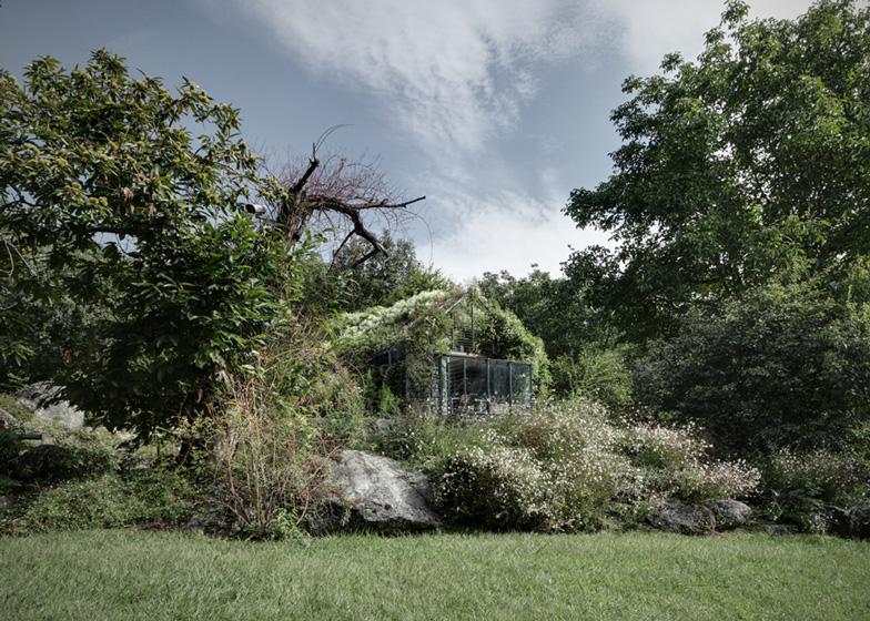Greenbox-House3.jpg