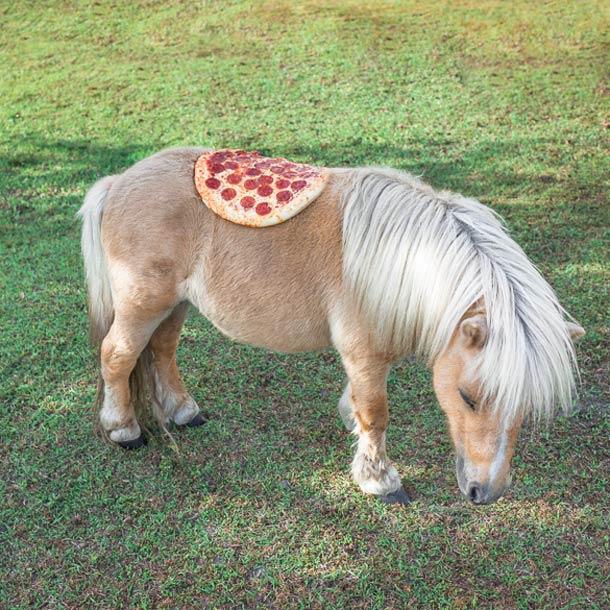 Jonpaul-Douglass-Pizza-In-The-Wild-1.jpg