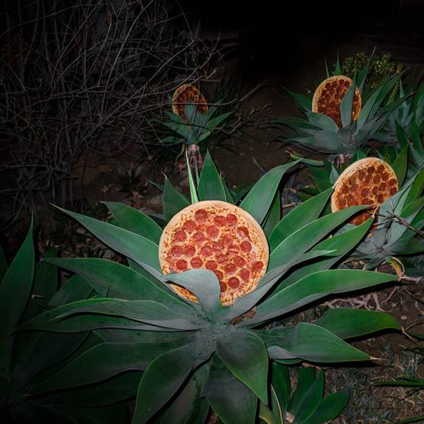 Jonpaul-Douglass-Pizza-In-The-Wild-18.jpg