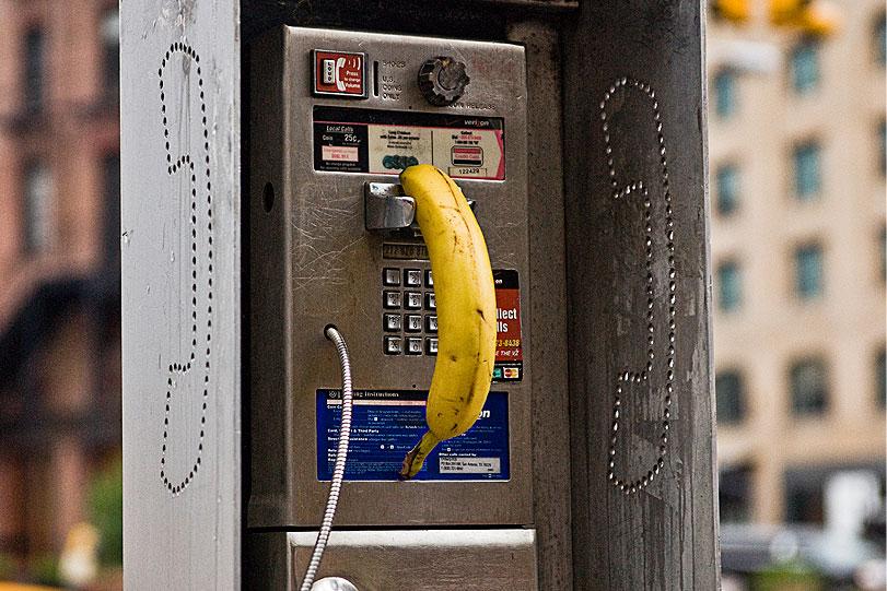 SpY-banana-01.jpg