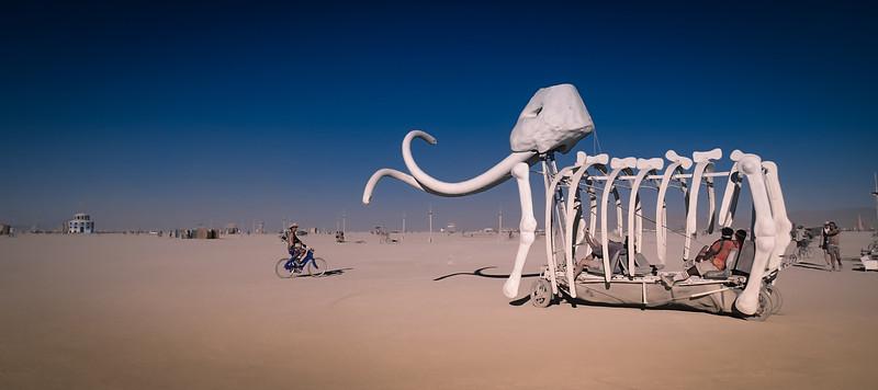Trey Ratcliff - Burning Man 2012 (128 of 162)-L.jpg