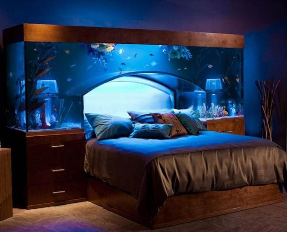 aquarium bed frame.jpeg
