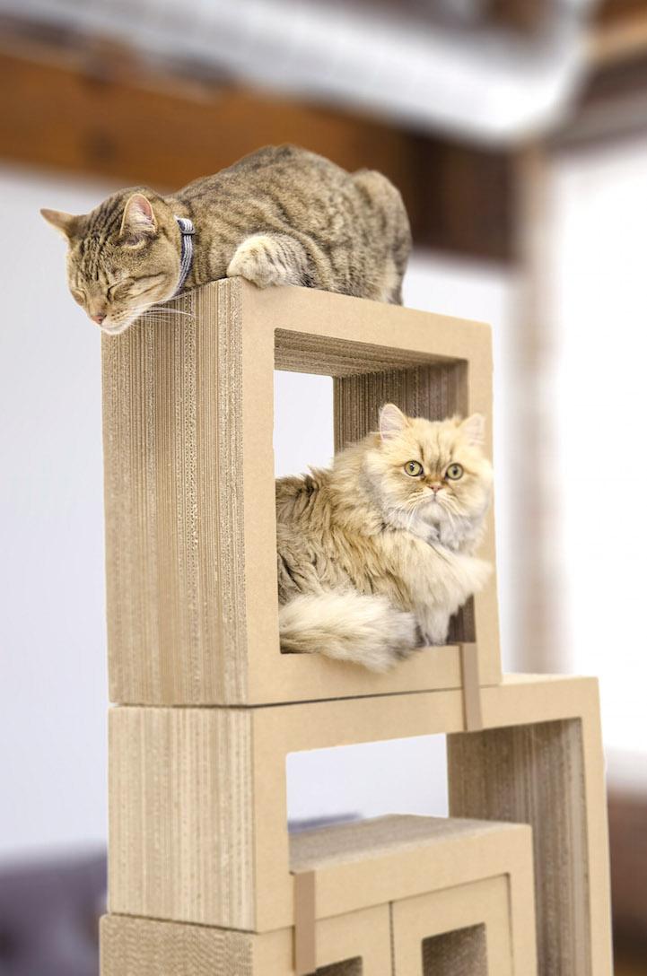 bkohffyc0lo-wb67aw-t_cat7.jpg