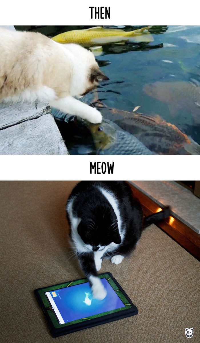 cats-then-now-funny-technology-change-life-22-5716355ec13d5_700.jpg