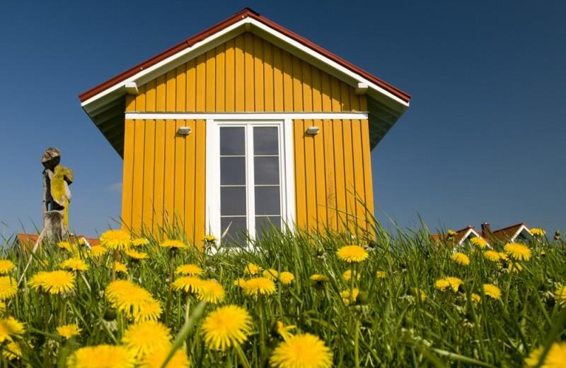 cheerful-house-on-spring-meadow-min-e1437631946976.jpg