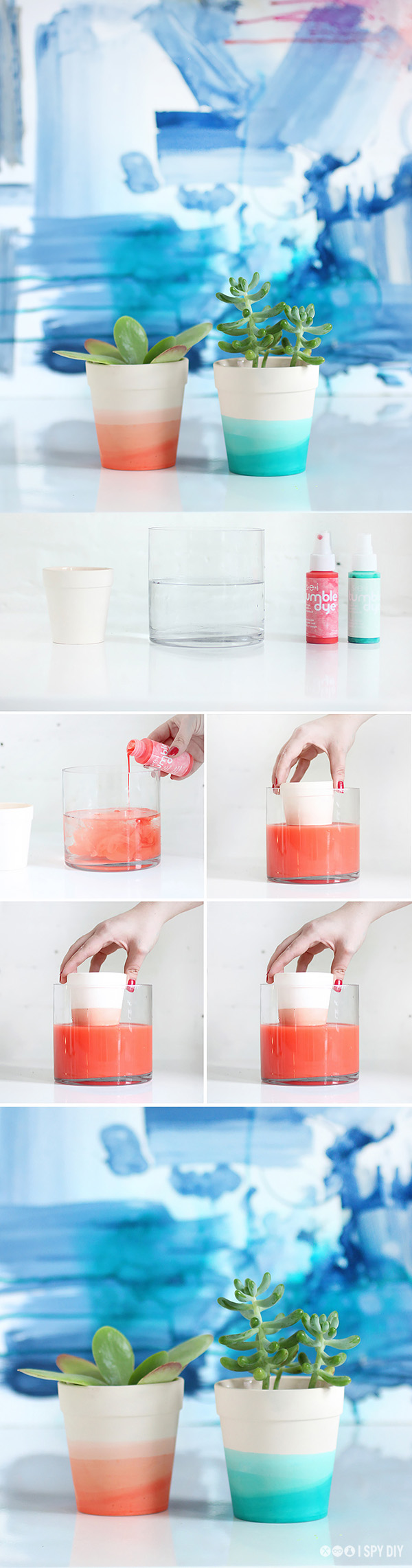diy-dip-dye-succulent-pot.jpg