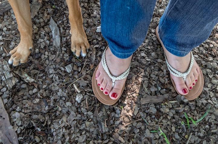 feetsandpaws04.jpg