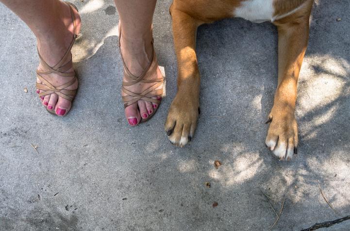 feetsandpaws08.jpg