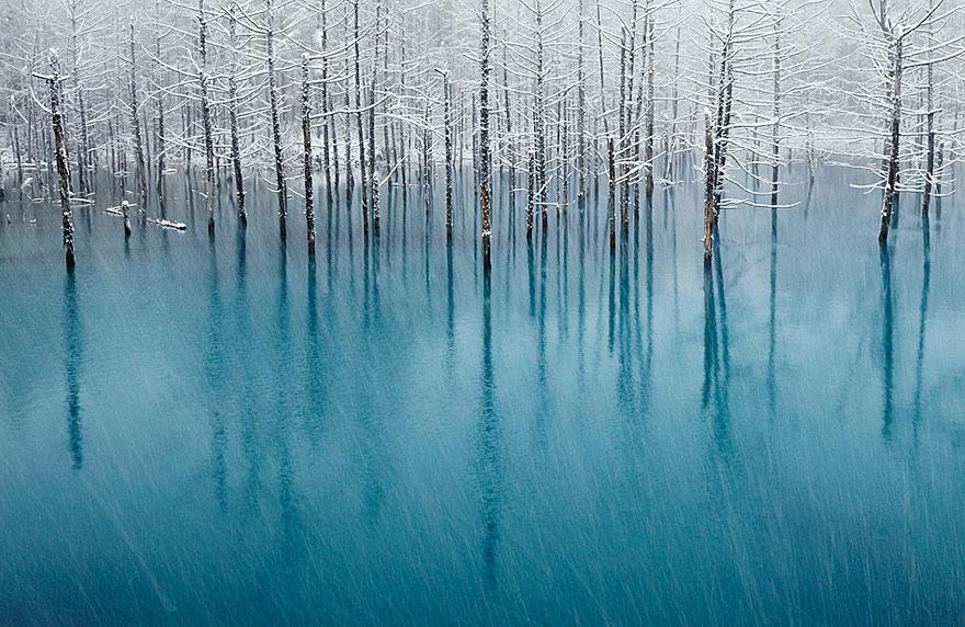frozen-lake-pond-ice-12_880.jpg