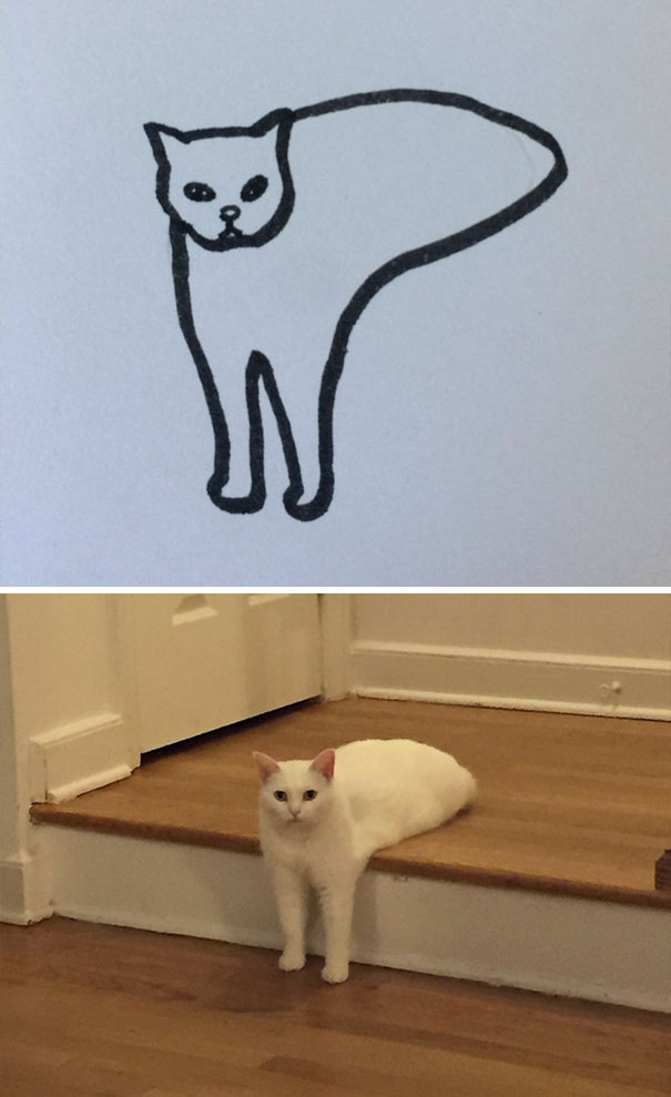 funny-poorly-drawn-cats-11-59705e7971cae_605.jpg
