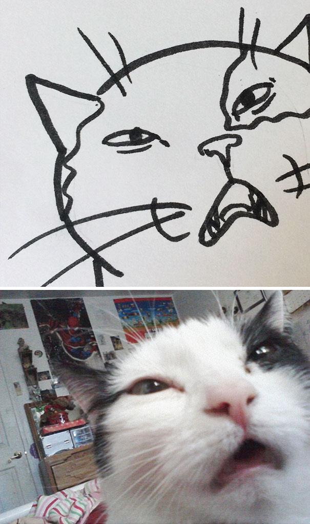 funny-poorly-drawn-cats-12-59705e7b9620a_605.jpg