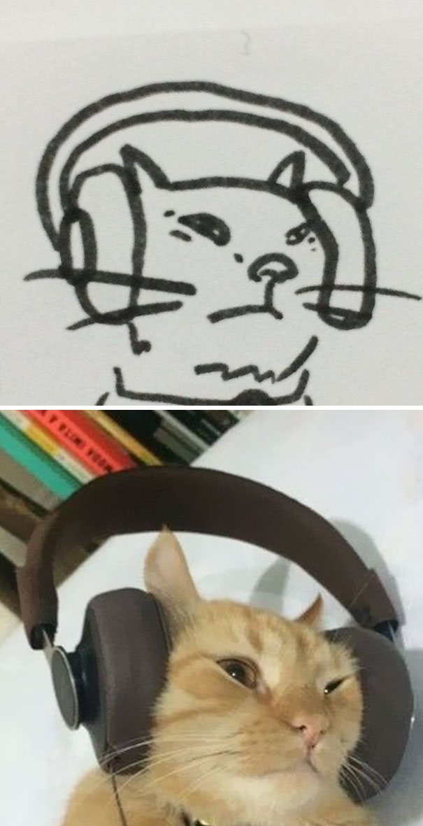 funny-poorly-drawn-cats-13-59705e7dab8fb_605.jpg