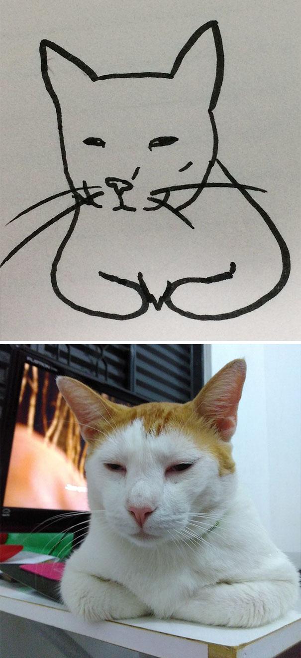 funny-poorly-drawn-cats-14-59705e802ac95_605.jpg