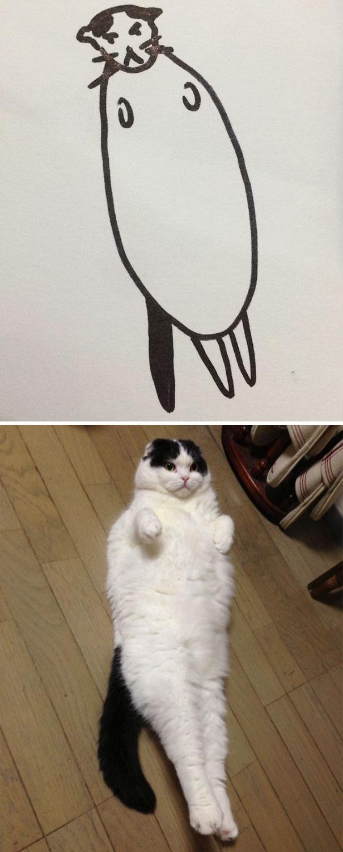 funny-poorly-drawn-cats-2-59705e678c6cc_605.jpg