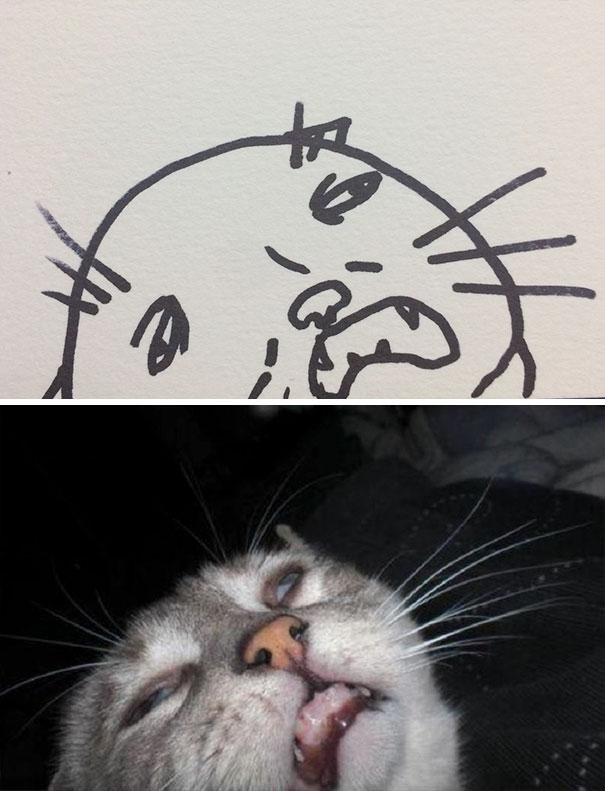 funny-poorly-drawn-cats-3-59705e6a419cb_605.jpg
